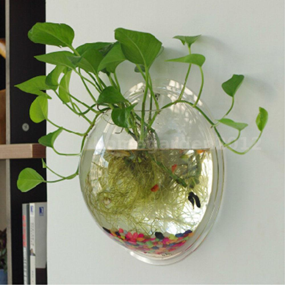 Wall mounted hanging acrylic fish tank bubble aquarium for Acrylic decoration